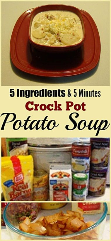 5 Minute 5 Ingredient Crock Pot Potato Soup. Find this and other yummy recipes @ https://www.slowcookerkitchen.com