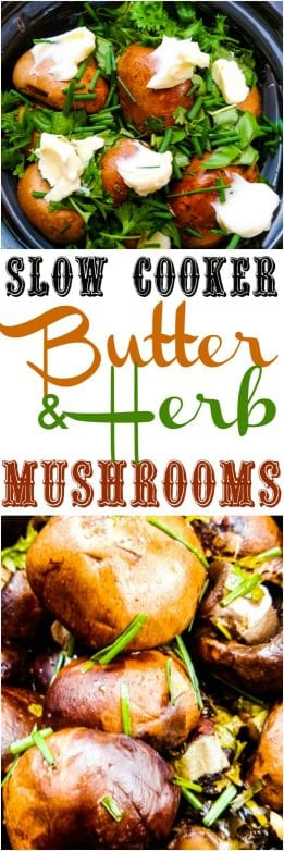 Find this tasty crockpot mushroom recipe and a lot more like it @ https://www.slowcookerkitchen.com